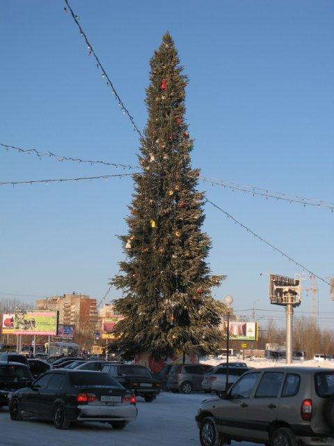 Омская елка